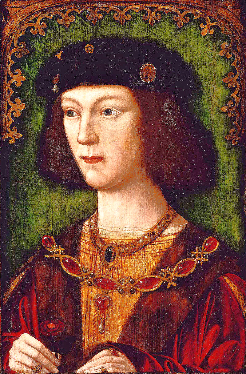 A Young Henry VIII