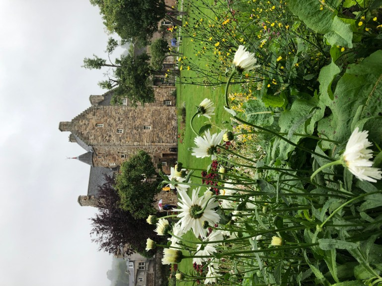 Mary Queen of Scots house at Jedburgh through flowers in the garden